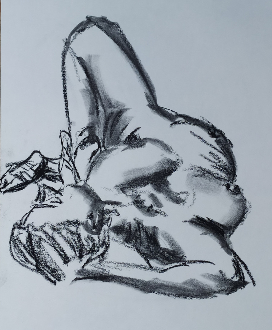Woman lying on back, seen from head, one knee drawn up, hand grasping ankle
